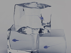 가임력 보존 <br> 정자 냉동 보관